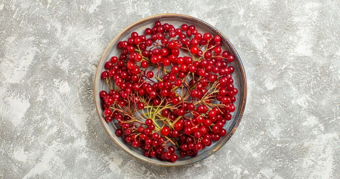 Cranberries: Nutritional Facts & Health Benefits