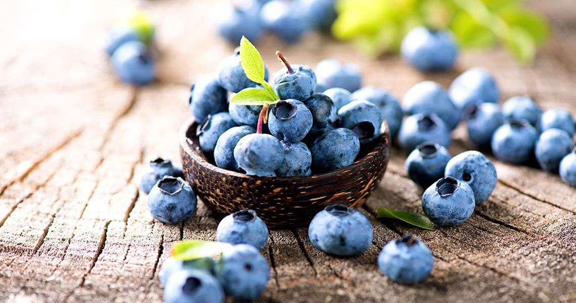 Proven Health Benefits of Blueberries You Did Not Know