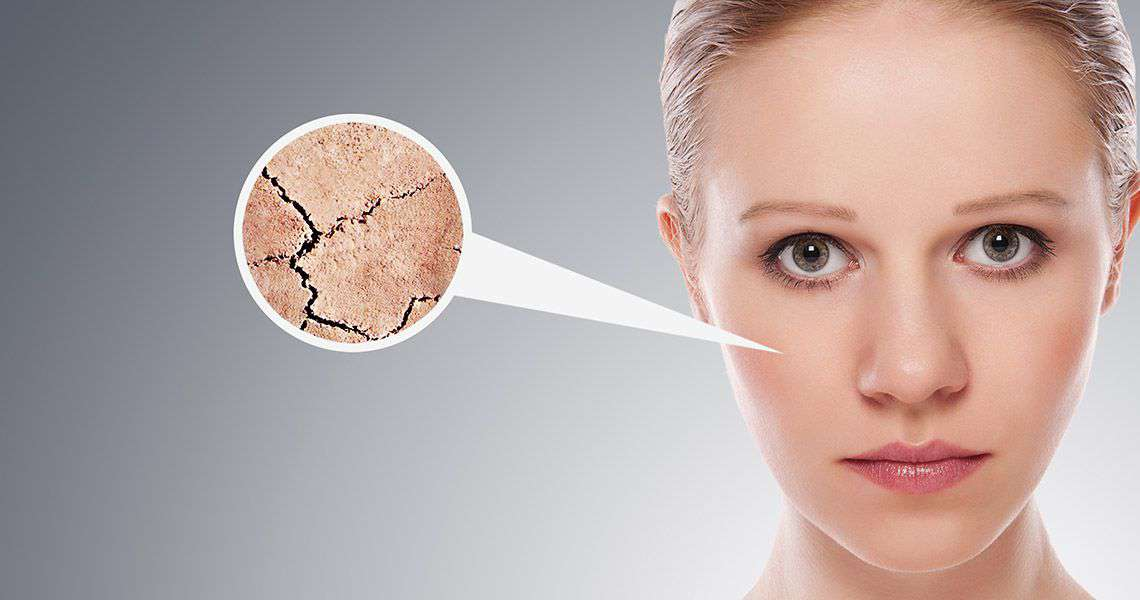 How Can Flax Seeds Help You in Enhancing Your Beauty?