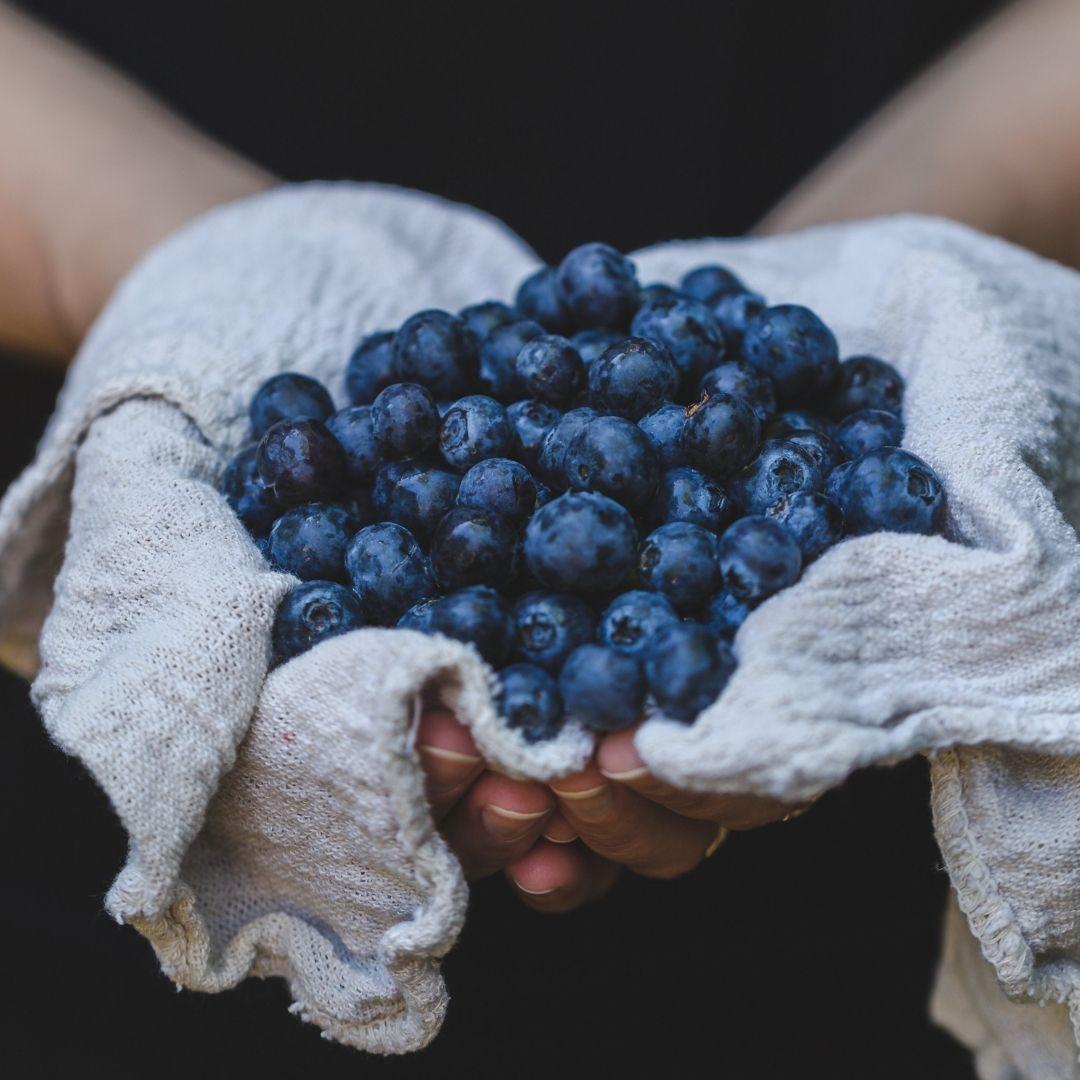 Choco Blueberries