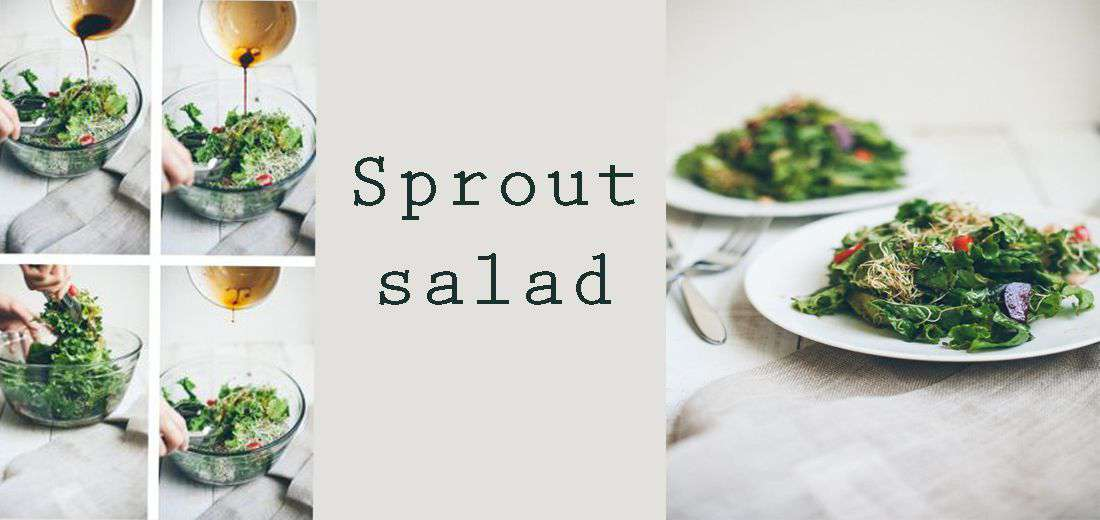 Sprouts Salad With Sweet Sorghum Dressing
